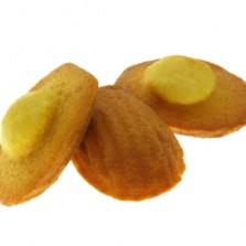 madeleine citron